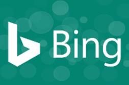 bing marketing company in delhi