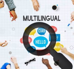 multilingual digital marketing company in delhi